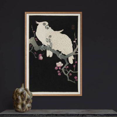 Two Cockatoos and Plum Blossom – Ohara Koson Kachō-e Art Print
