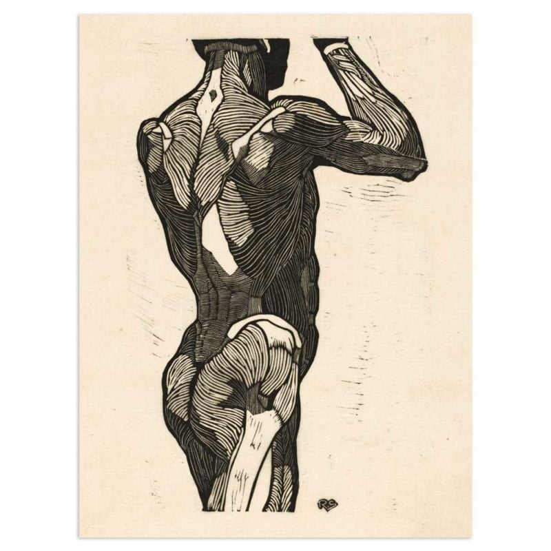 Anatomical study of a mans back and glute muscles - Reijer Stolk Art Print 30x40
