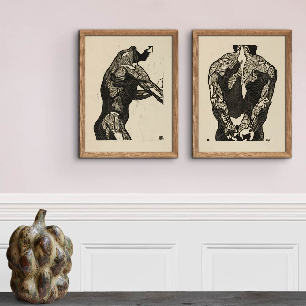 Anatomical study of a mans back muscles - Reijer Stolk Art Print Poster