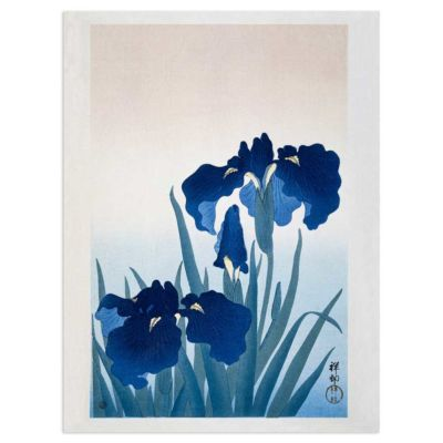Iris in bloom – Ohara Koson Art Print