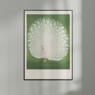 White Peacock on Green – Ohara Koson Woodblock Print Poster