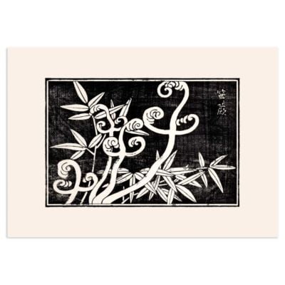 Fern coils and bamboo – Japanese woodblock print