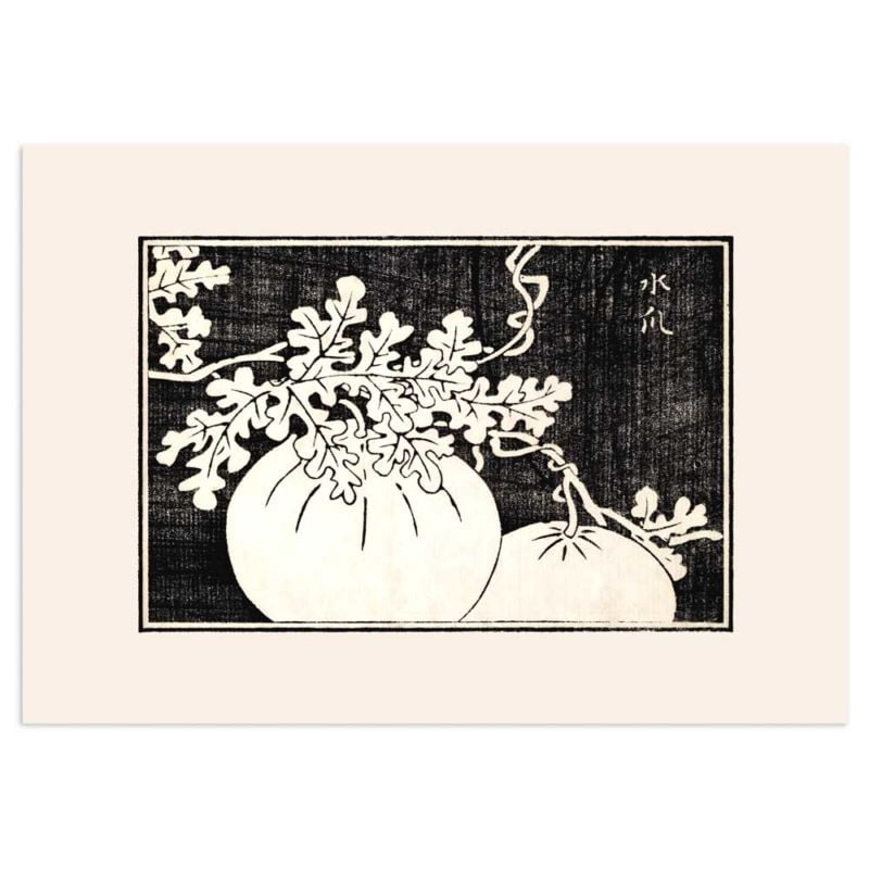 Gourd and vine - Japanese woodblock print 21x30cm