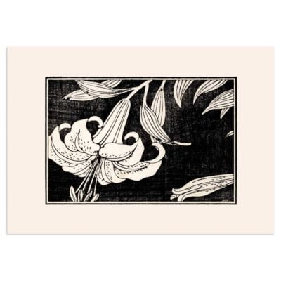 Lily in bloom – Japanese woodblock print Poster
