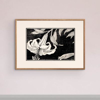 Lily in bloom – Japanese woodblock print