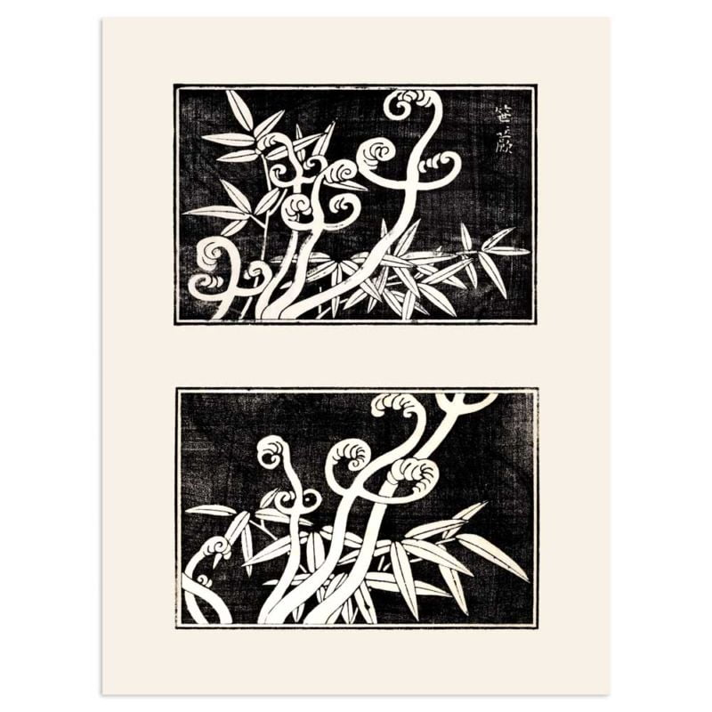 Fern coils and bamboo - Japanese Art print 30x40cm