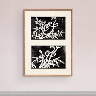 Fern coils and bamboo – Japanese Art print Poster