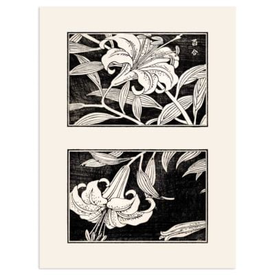 Lilies in bloom – Japanese Art print Poster
